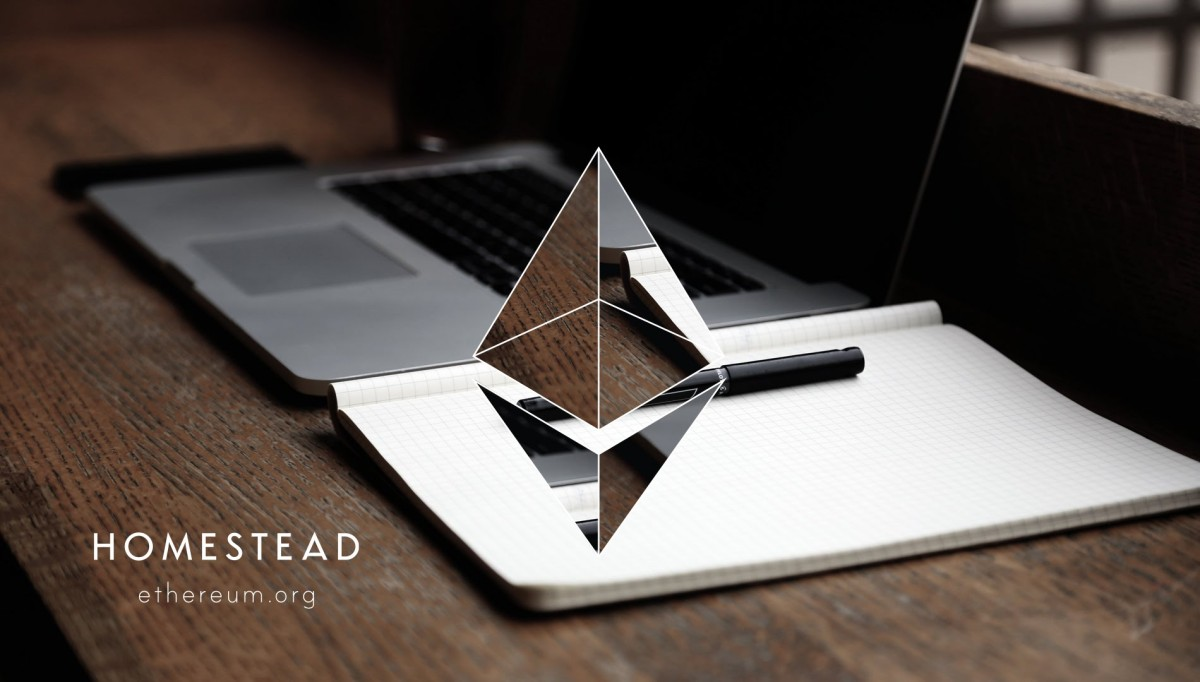 fear and risk in ethereum